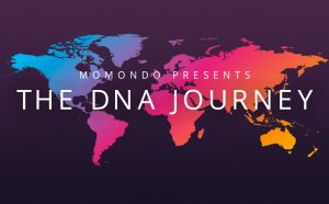 Momondo DNA